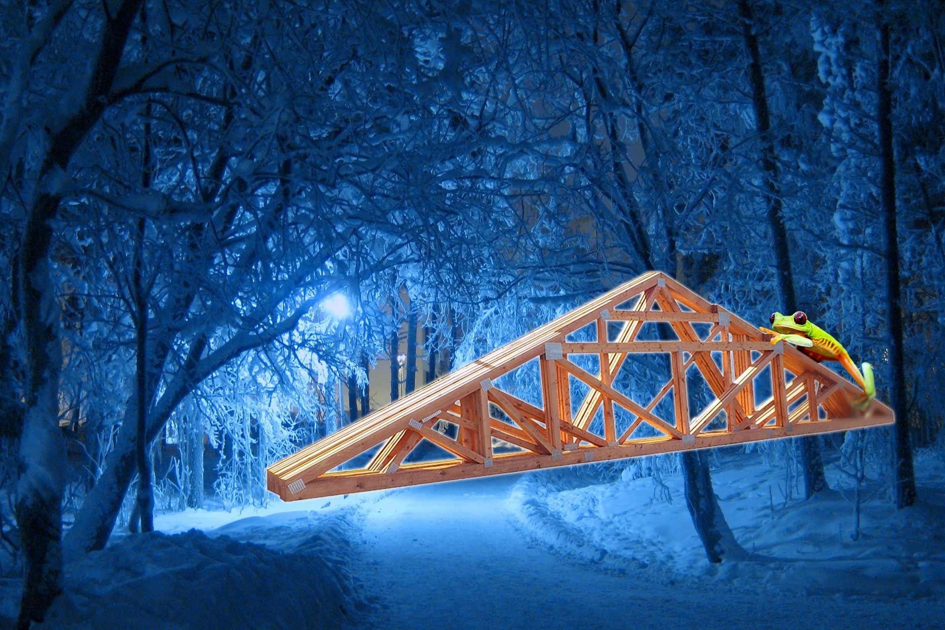 les-vazniky-zima
